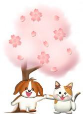 お花見する犬と猫のイラスト