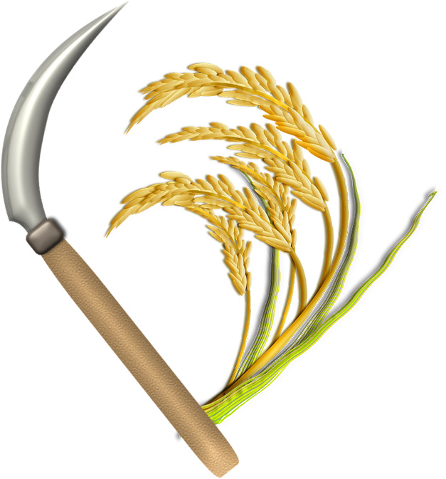 稲穂と鎌のイラスト