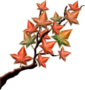 紅葉の枝のイラスト