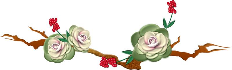 葉牡丹の飾り罫イラスト