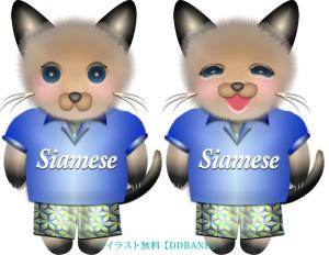 夏服を着た男の子のシャム猫イラスト