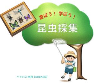 夏休みの昆虫採集をイメージした無料イラスト・ロゴ入り