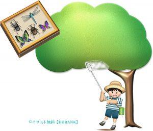 夏休みの昆虫採集をイメージした無料イラスト・ロゴ無し