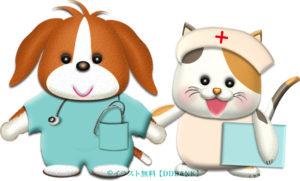 犬と猫の看護師のイラスト