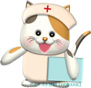 ニャンコの看護婦さんのイラスト