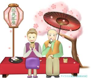 花見茶屋でお花見する老夫婦のイラスト