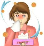 花粉症でティッシュの箱を手放せない、鼻水&パンダ目の女性のイラスト