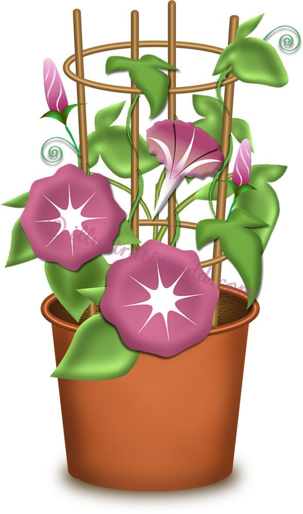 花の咲いた朝顔の鉢のイラスト