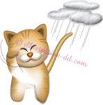 猫が顔を洗うと雨のイラスト