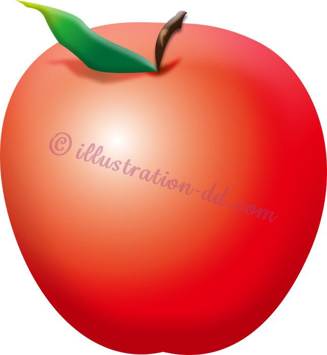 林檎(りんご)のイラスト