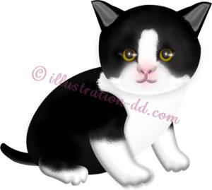 黒白ハチワレの子猫のイラスト