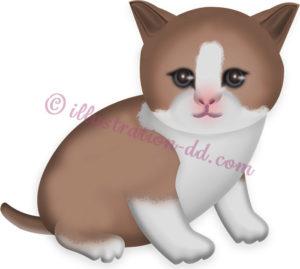 茶ハチワレの子猫のイラスト