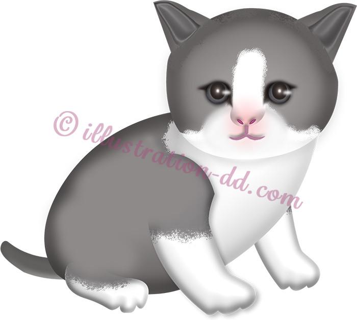 灰色ハチワレの子猫のイラスト