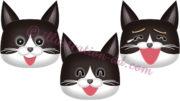 猫の顔・ハチワレ黒・笑う3点セットのイラスト