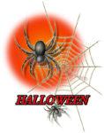 ハロウィンの蜘蛛と蜘蛛の巣のイラスト
