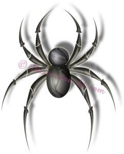 蜘蛛(くも)のイラスト