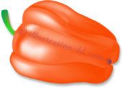 オレンジ色パプリカのイラスト
