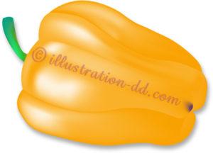 黄色いパプリカのイラスト