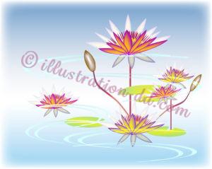 蓮(はす)の花の和風イメージ